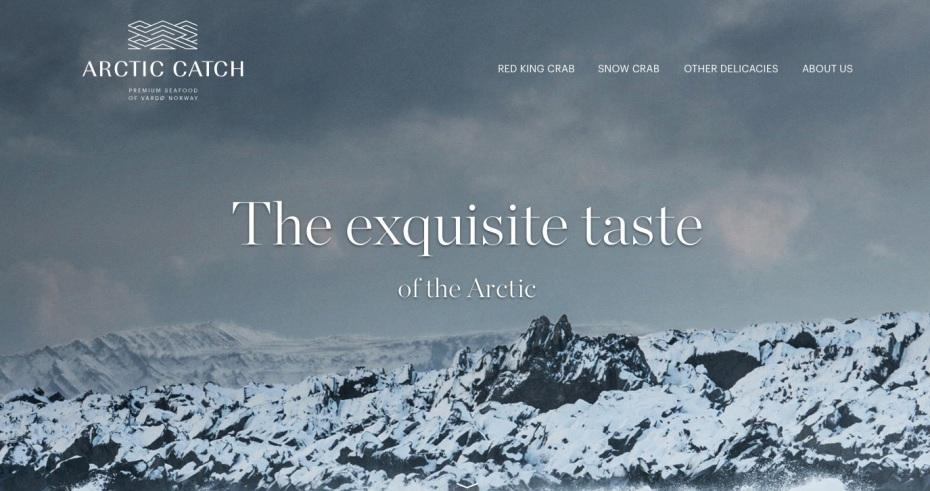Arctic Catch